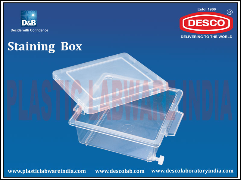 Polypropylene Staining Box